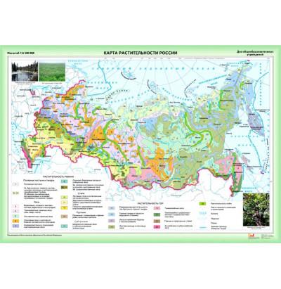 Карта Растительность России 2 листа лам. 112х180