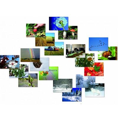 Набор карточек Фенологические наблюдения
