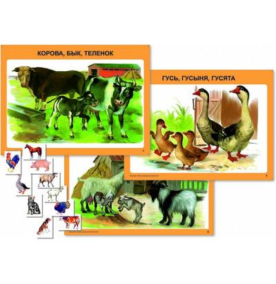 Таблицы Домашние животные